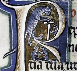 gato medieval 2